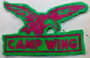 camp_wing_patch.jpg